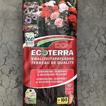 Ecoterra geraniums en bloeiende planten 30l