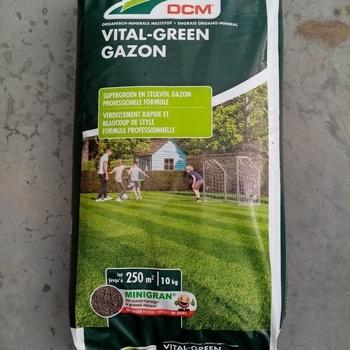 Vital-green gazon 20kg