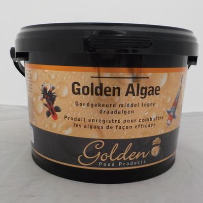 Golden algae 2500ml