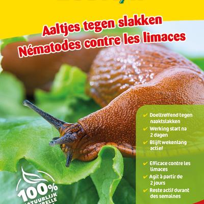 Aaltjes tegen slakken 12 miljoen / 40 m²