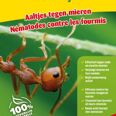 Aaltjes tegen mieren 15 miljoen / 30 m²