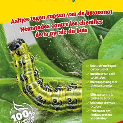 Aaltjes tegen larven buxusmot 10 miljoen / 60 m²