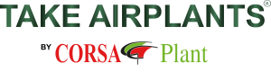 Take Airplants by Corsa Plant