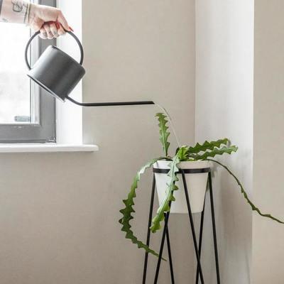 Waterbehoefte van kamerplanten